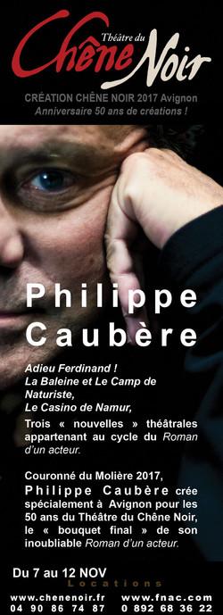 Pub_theatre-s_87x240_caubere