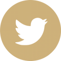 twitter icon round transparent.png