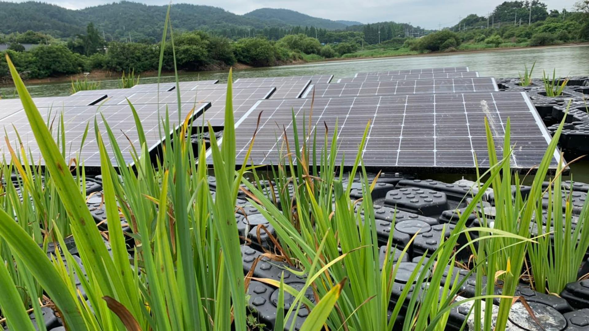 Purification & Solar Floating System