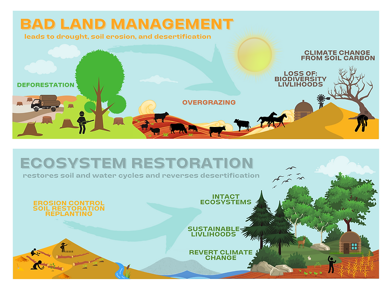 Diagram showing bad land management and ecosystem restoration