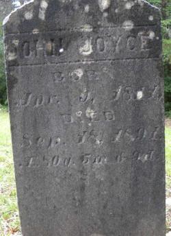 John W. Joyce (1811-1891), Contributed by Thomas Joyce