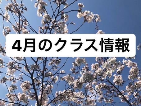 4月のクラス情報
