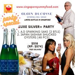 silver plus party