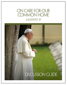 Laudato Si Disussion Guide.png