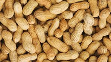 The Future of Peanut Allergies