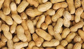 The Future of Peanut Allergies