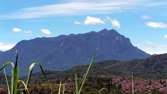 Pico Morumbi, Estrada da Graciosa