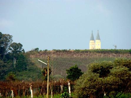 Monte Belo do Sul