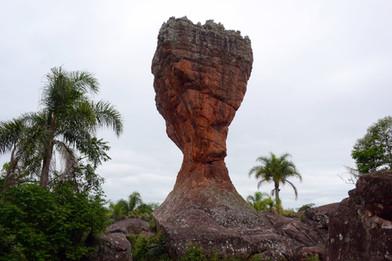 Parque estadual Vila Velha, Taça