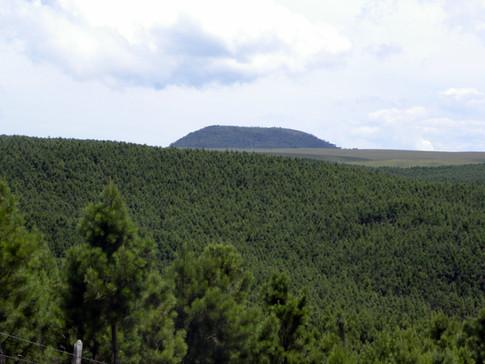 Pico Monte Negro
