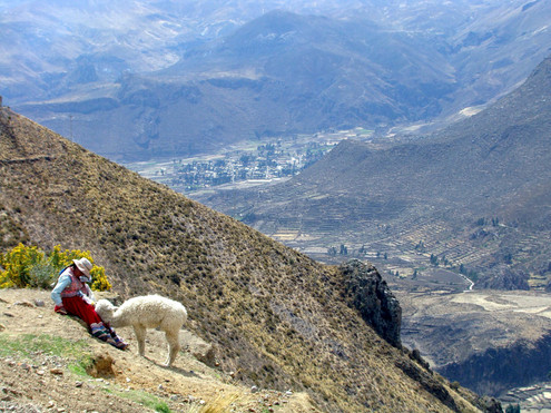 Camino Arequipa Colca