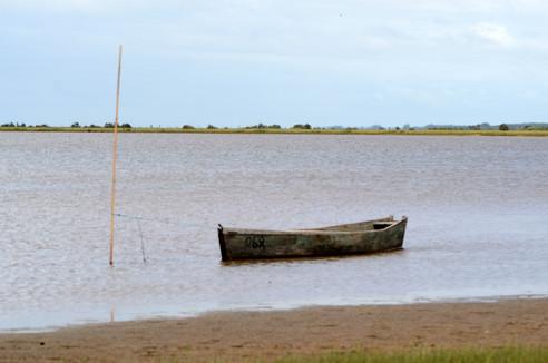 Lagoa do Peixe, Tavares