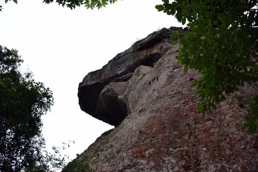 Parque estadual Vila Velha, Rex
