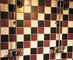 dual exposed valve walk in shower