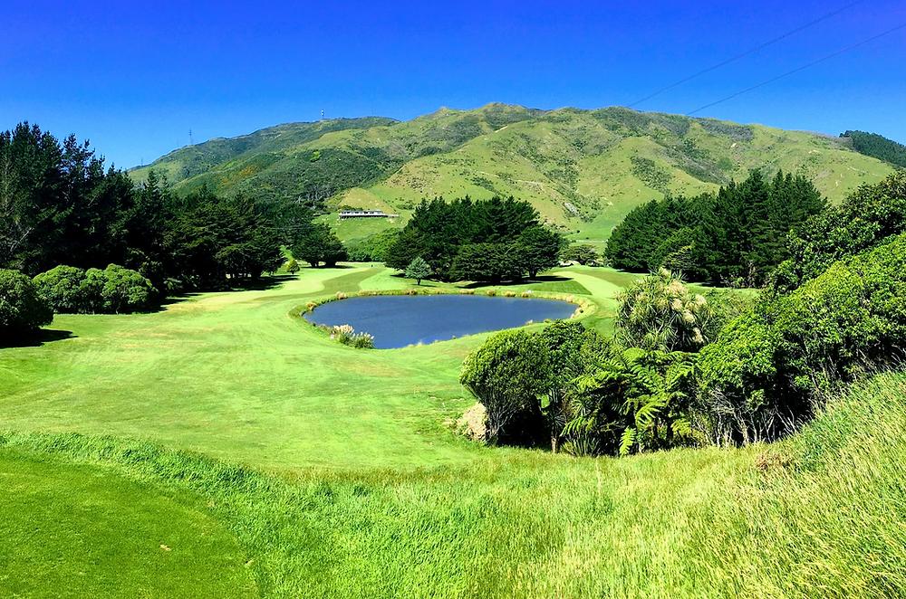 Wellington Golf Tour genuine kiwi experience