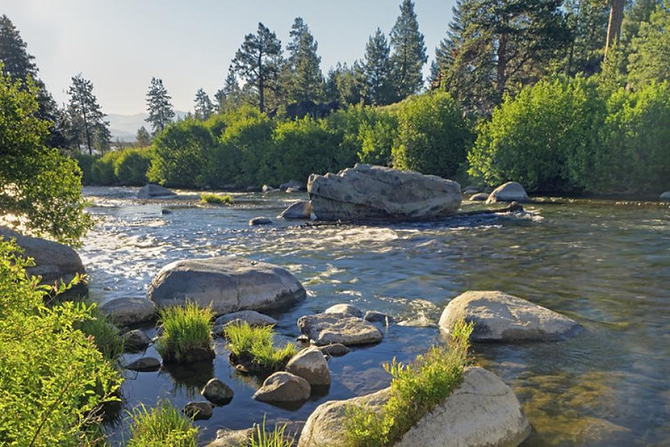 truckee_river_in_summer_snc.jpg