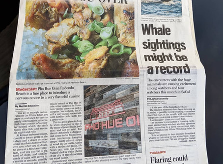 We finally got a HARD COPY and are extremely GRATEFUL to have PHO HUE OI featured on theDaily Breez