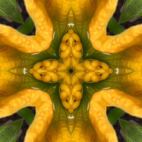 Pandemania Day 120 - Small Worlds, Mandala 090120