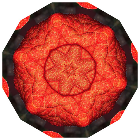 Daily Practice - Interconneted Systems, Mandala 050720