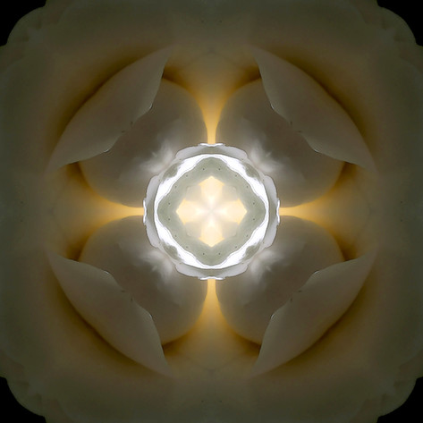 Pandemania Day 50 - Tranlucency, Mandala 050520