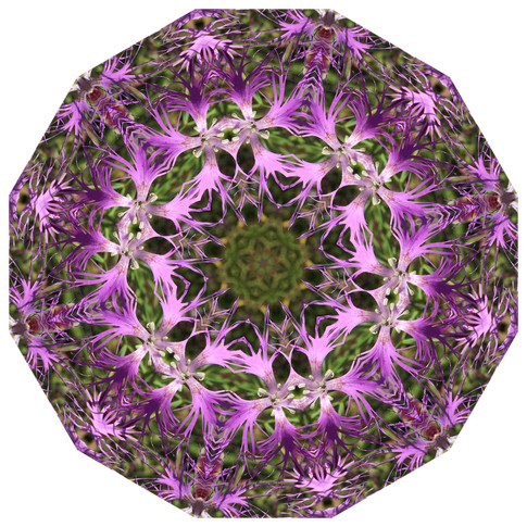 Daily Practice - In Step with Self, Mandala 061719