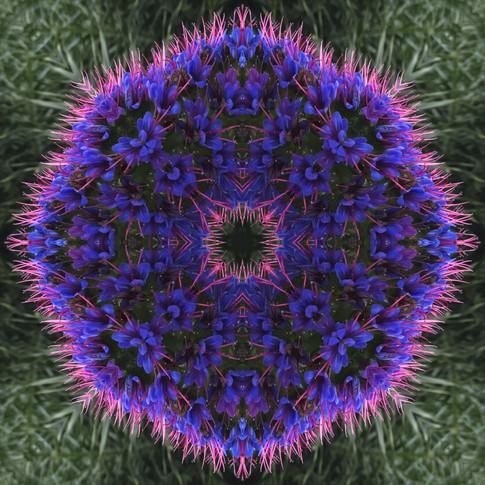 Pandemania Day 10 - Lighness of Being, Mandala 032620