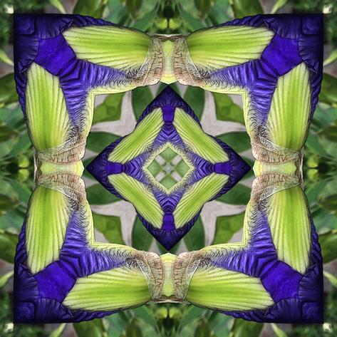 Pandemania Day 25 - Recursive Bloom, Mandala 041020