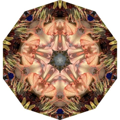Pandemania Day 147 - Palette Inspiration, Mandala 081020