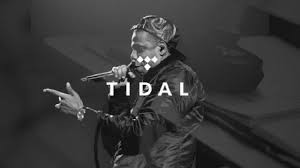 Tidal Wave: Could These Fraud Allegations Be the Destruction of Tidal?