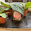 Thumbnail: Plant doll