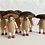 Thumbnail: Dried Mushroom