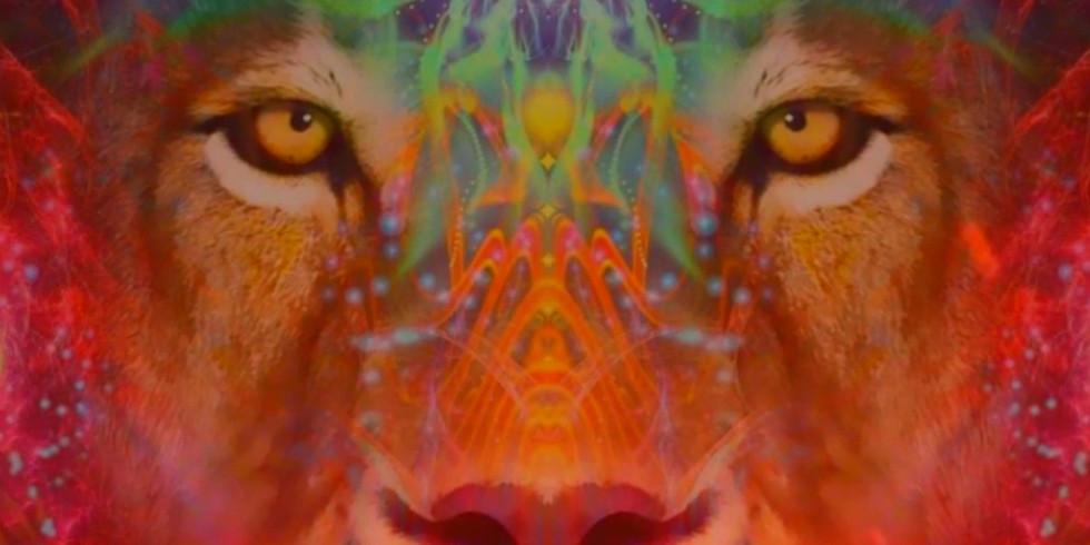 Lions Gate Activation & Meditation