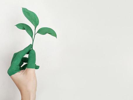 Hur kommunicerar man hållbarhet på ett trovärdigt sätt?