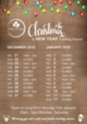 ChristmasTradingHours2019web.jpg