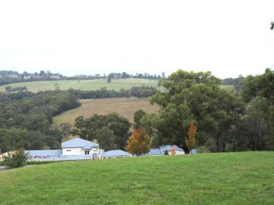 隱藏在Yarra Valley的瑰寶 – Hillcrest Vineyard
