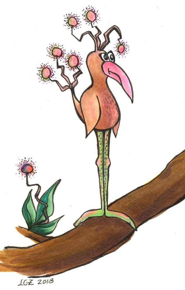 Disgruntled Pink Puffballs Bird