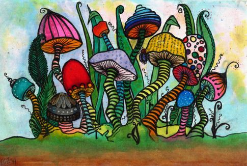 A Mushroom of Every Stripe