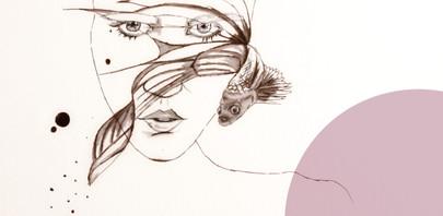 Il·lustracions