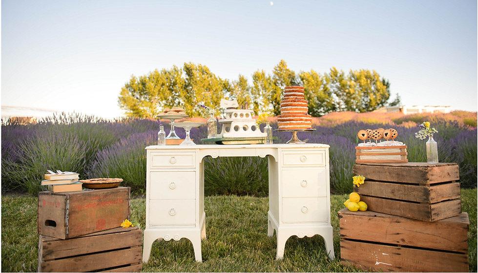 Lavender Field Wedding