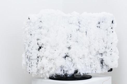 2.Emilija Kasumovic, Crystal Screen, 2020