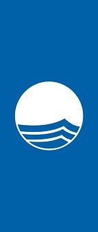 Logo-BA-Bandeira.png
