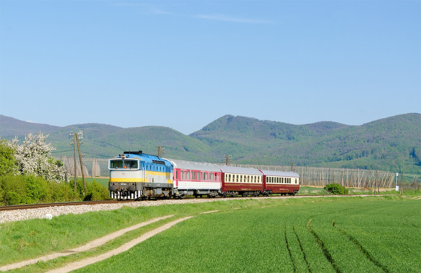 TAILOR-MADE SPECIAL TRAINS