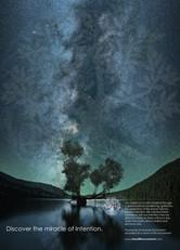 Tree of LIfe Movement Advertising