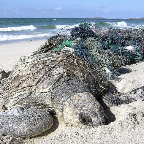 Ghost Nets and Fishing Debris