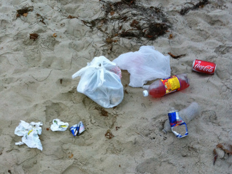 The true costs of a plastic society.