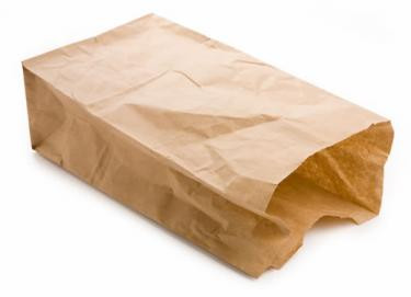 the-lesson-of-the-brown-paper-bag.jpg.crop_display.jpg