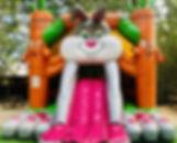 20191228_125756_edited.jpg