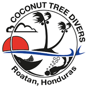 Coconut Tree Divers logo.png