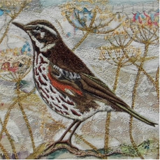 Redwing Greetings Card by Chloe Morter Design