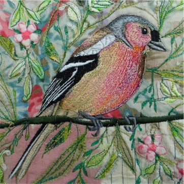 Chaffinch Greetings Card by Chloe Morter Design